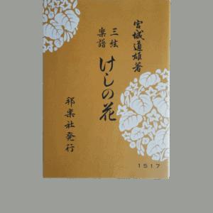 Jiuta Shamisen Keshi no Hana けしの花 | shami-shop.com
