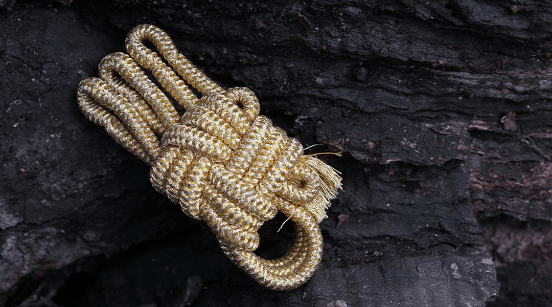 golden shamisen neo | shami-shop.com